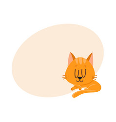 cute and funny red cat character sleeping vector image vector image