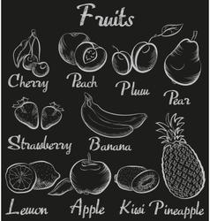 Vintage fruits Hand-drawn chalk blackboard sketch vector image vector image