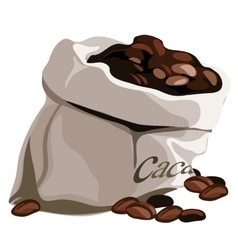 Bag with flavored coffee beans isolated vector