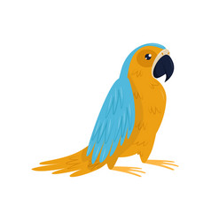 cartoon icon of parrot with blue and orange vector image