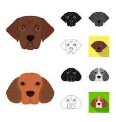 dog breeds cartoonblackflatmonochromeoutline vector image