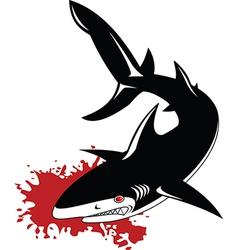 gray shark vector image