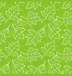 hawthorn leaves seamless vector image