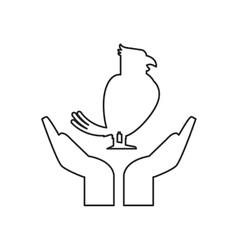 Isolated bird pet over hands design vector