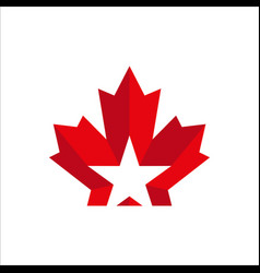 Maple leaf with star logo template good vector