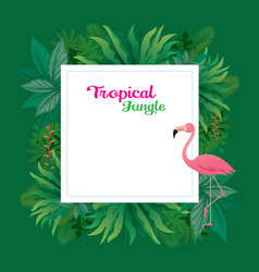pink flamingo with tropical jungle frame vector image