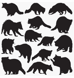 raccoon silhouettes vector image
