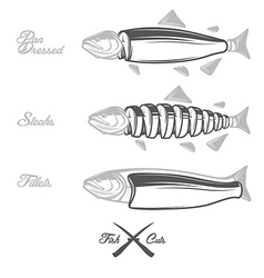 Salmon cuts diagram vector image