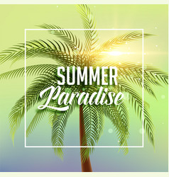 summer paradise poster with palm tree and sun vector image