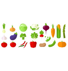 Vegetables design element set vector