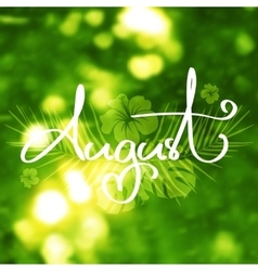 Handmade calligraphy and text August vector image