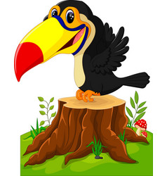 Cartoon happy toucan on tree stump vector