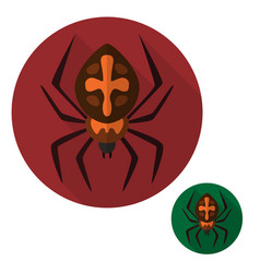 spider icon isolated sign symbol and flat style vector image
