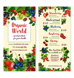 price menu for berries and garden fruits vector image vector image