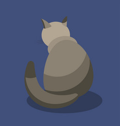 A gray cat is sitting with its back to the viewer vector
