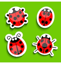 Lady bird icons vector