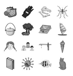 Obvvozovanie nature shop and other web icon in vector