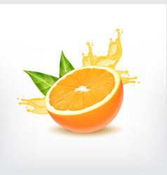Orange fruit with splashing juice vector