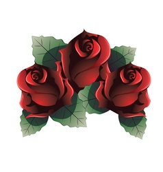 Red Roses with Leaves vector