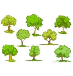 Set leafy green trees vector