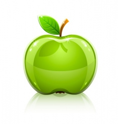 glass green apple with leaf vector image vector image