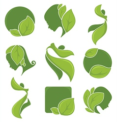 eco collection vector image