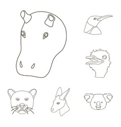 wild animal outline icons in set collection for vector image vector image