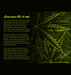 Background with cannabis leaves vector