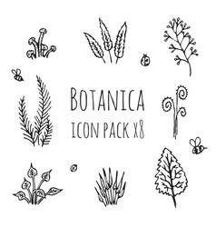 Botanica - stylized eight items monochrome icons vector