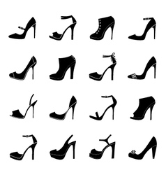 elegant shoes vector image