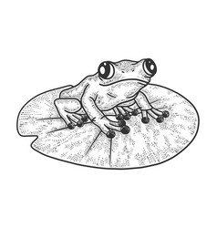 Frog on leafsketch vector