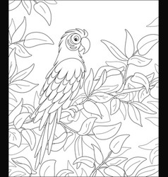 Funny parrot among leaves in a tropical jungle vector