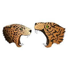 hungry leopard and tiger want to eat vector image