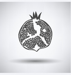 icon of pomegranate vector image