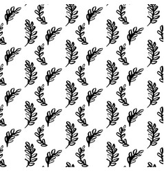 natural plants brush seamless pattern vector image