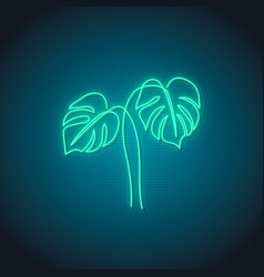 neon monstera leaf sign glowing monstera leaves vector image