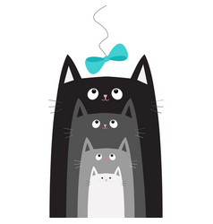 black gray cat head looking at blue bow hanging on vector image