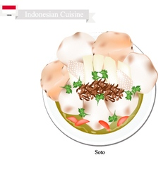 Soto or Indonesian Chicken and Vegetables Soup vector image vector image