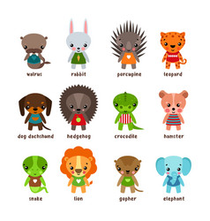 Cartoon animals leopard and walrusrabbit and dog vector