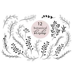 set botanical brushes rustic hand drawn vector image