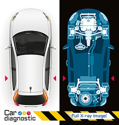 Car Diagnostic Full X ray vector image vector image