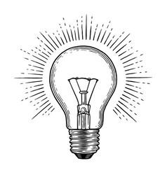 engraving light bulb vector image