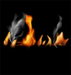 fire in black vector image vector image