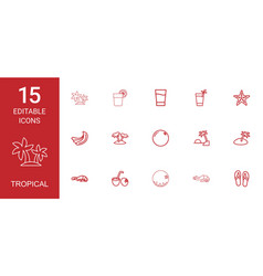 15 tropical icons vector