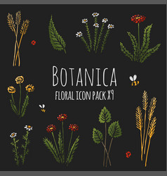 Botanica floral dark - stylized colored icons vector