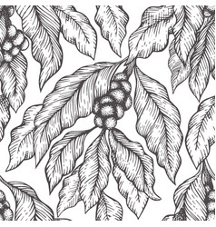 coffee tree branch seamless pattern vintage vector image