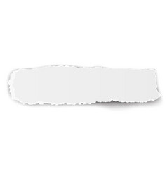 Oblong ragged piece of paper isolated on white vector