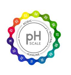 Ph meter for measuring acid alkaline balance vector