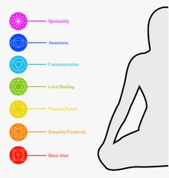 the seven chakras with their respective colors vector image