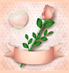 vintage background with pink rose vector image